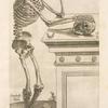 Secunda ossium tabula [Human skeleton inspecting a skull and in deep thinking]