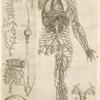 Nona ac postrema huius tractatus figura.
