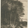 Paysage, hiver : lisière de forêt.]