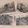 Remains of German machine gunner, near Hamel ; Scenes in old German trenches near Verdun.