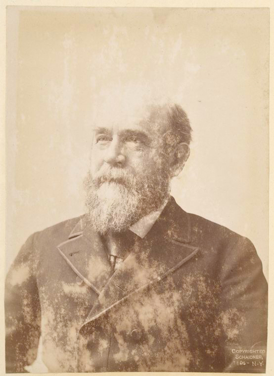 This is What Henry George Looked Like