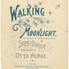 Walking in the moonlight