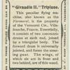 """""""Givaudin II"""" triplane."""