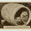 'The babes in the wood.'