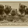 'When we were very young.'