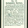 Hallamshire Harriers.