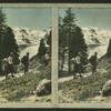 Peaks of Bernina and Bellavista.
