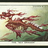 The sea dragon.