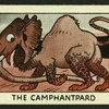 The camphantpard.