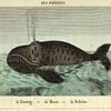 Les Poissons: le Hareng, la Morue, la Baleine.