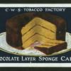 Chocolate layer sponge cake.