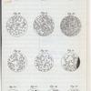 Expériences au sujet de la génération.]  Fig. 13-25.