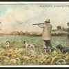 Partridge-shooting over dogs.