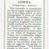 Comma.