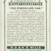 The Poringland Oak.