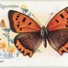 Great Britain - small copper.