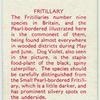 Fritillary.