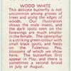 Wood White.