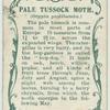 Pale tussock moth & larva.