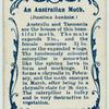 An Australian moth & larva.