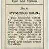 Hypolimnas bolina.