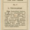 C. Thyodamas.