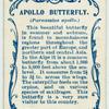Apollo butterfly.