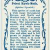 Privet-hawk moth.