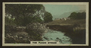The placid stream.