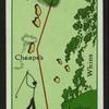Mr. Tiger's round--2nd hole.