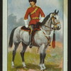 2nd Dragoons Scots Greys.