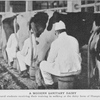 A modern sanitary dairy; Agricultural students receiving their training in milking at the dairy farm of Hampton Institute.