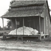 Cotton on porch of sharecropper's home, Maria plantation, Arkansas, October 1935.