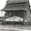 Cotton on porch of sharecropper's home, Maria plantation, Arkansas, October 1935.