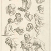 [Studies of monkeys.]