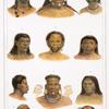 Têtes de différentes castes sauvages. [1. Iouri; 2. Maxuruna (Machourouna); 3. Iouripassé; 4. Mura (Moura); 5. Bororeno; 6. Iouma; 7. Coroado; 8. Botocoudo; 9. Femme Puris; 10. Botocoudo (momifiée); 11. Puris (momifiée].