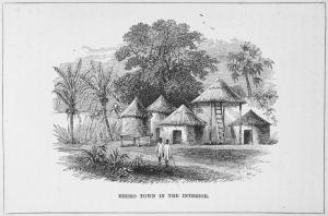 Negro Town in the Interior