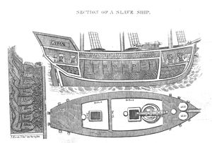 Section of a Slave Ship. From Walsh's Notes of Brazil.