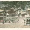 In the Grounds of the Nikko Temples.