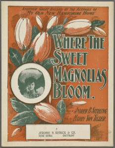 Where the sweet magnolias bloom / words by Andrew B. Sterling ; music by Harry Von Tilzer.