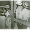 Negro day laborers brought in by truck from nearby towns, waiting to be paid off for cotton picking and buy supplies inside the plantation store, Friday night, Marcella Plantation, Mileston, Mississippi Delta, November 1939.