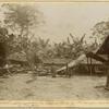 """Congo Français: Une caravane au repos au village de """"Loumanga"""", dans la forêt du Mayombe."""