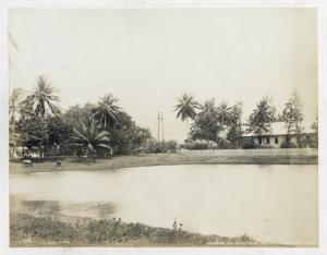 Governor's pond & lighthouse; Sea Wall; Georgetown, No. 145.