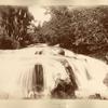 Llandovery Falls. St. Ann.