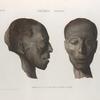Thèbes. Hypogées. Profil et face d'une tête de momie d'homme.
