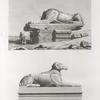 Thèbes. Karnak. Vue et détails des Sphinx de l'Avenue des propylées du palais.