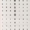 Collection d'antiques. 1-3.10-14.17-27.29-34.36-39.41-50.53-59.62-77. Amulettes en forme de scarabée, en terre cuite et en porcelaine; 4-9.15.16.28.35.40.51.52.60.61. Autres amulettes.