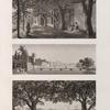 Environs du Kaire [Cairo]. 1. Vue de petit bras du Nil vis-à-vis de l'île de Roudah [el-Rôda]; 2. Vue de l'Allée des Sycomores dans l'île de Roudah [el-Rôda]; 3. Vue de Jardin de Mourâd Bey à Gyzeh [Jîzah].