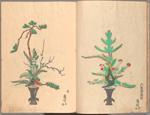 Rikka zu = Flower arrangements.