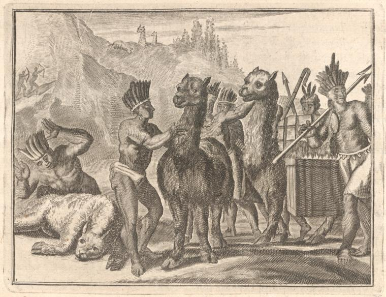 'Llama (says he) a four-footed Creature, furnishes its Master with Meat and clothing.'